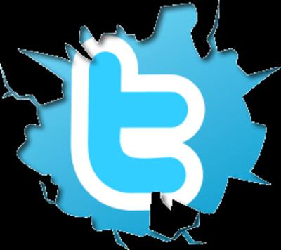 logo twitter, senza sfondo, bello